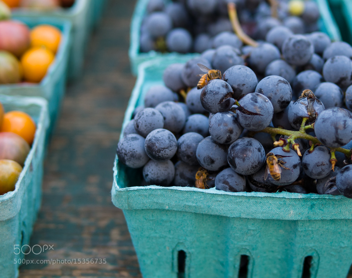 Photograph Grape Buzz by Gil Garber on 500px