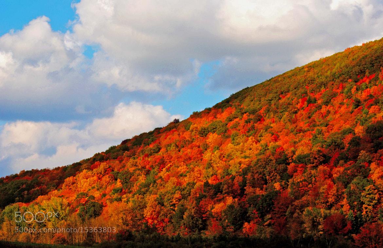 Photograph fall mountain by cheryl rendino on 500px