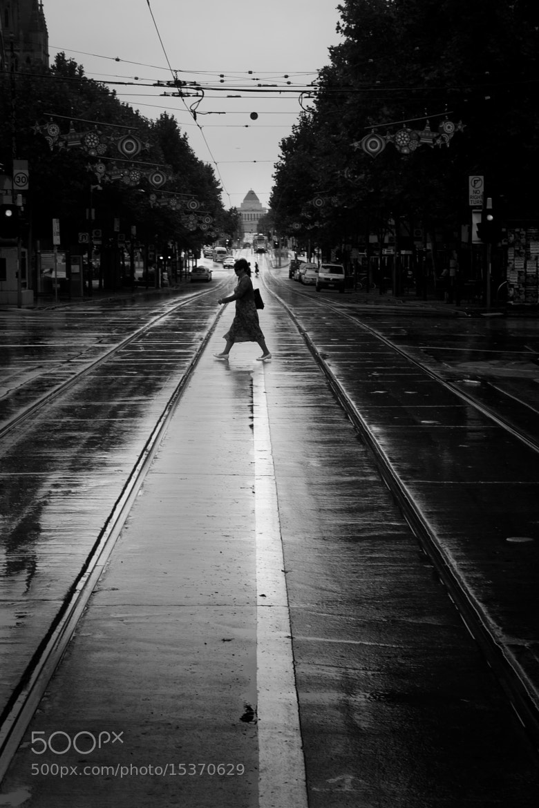 Photograph Crossing by Timo Balk on 500px