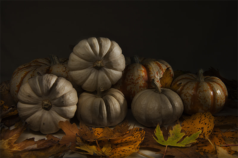 Photograph Autumn Still Life by Nebojsa Novakovic on 500px
