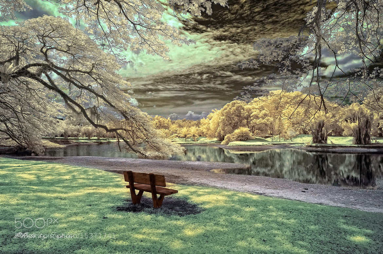 Photograph Infrared Fantasy by Mohd Zaki Shamsudin on 500px