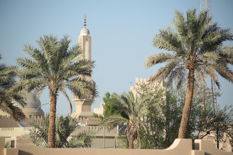Photograph البريمي by S_alghaithi  on 500px