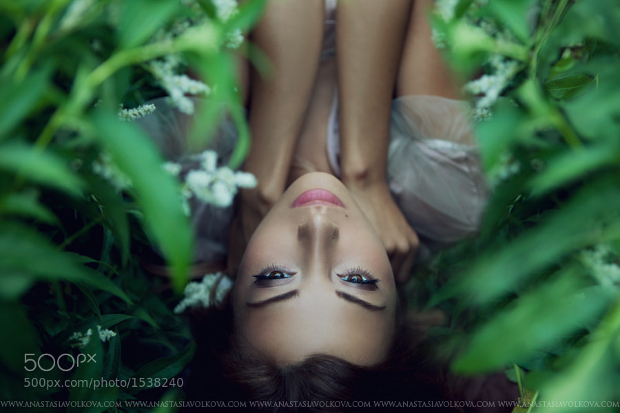 Photograph Untitled by Anastasia Volkova on 500px