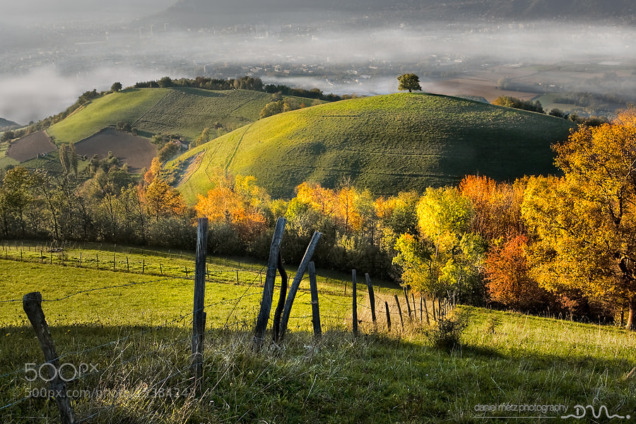 Photograph autumn colors by Daniel Metz on 500px