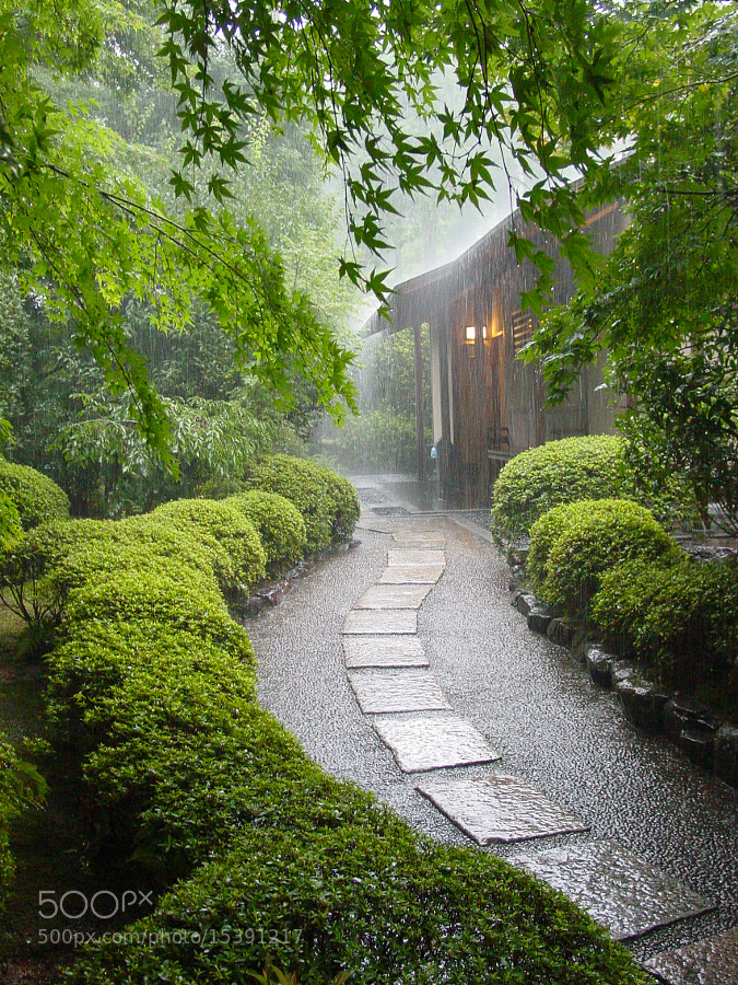 Photograph Kyoto downpour by Gavin Thomas on 500px