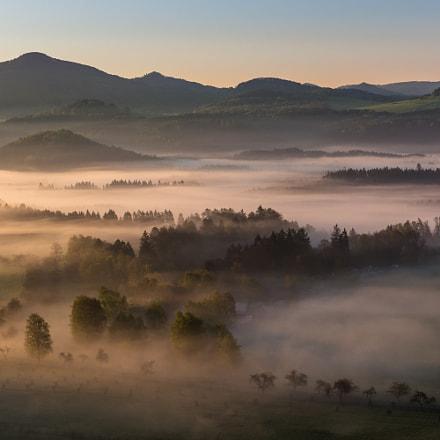 Spring misty morning