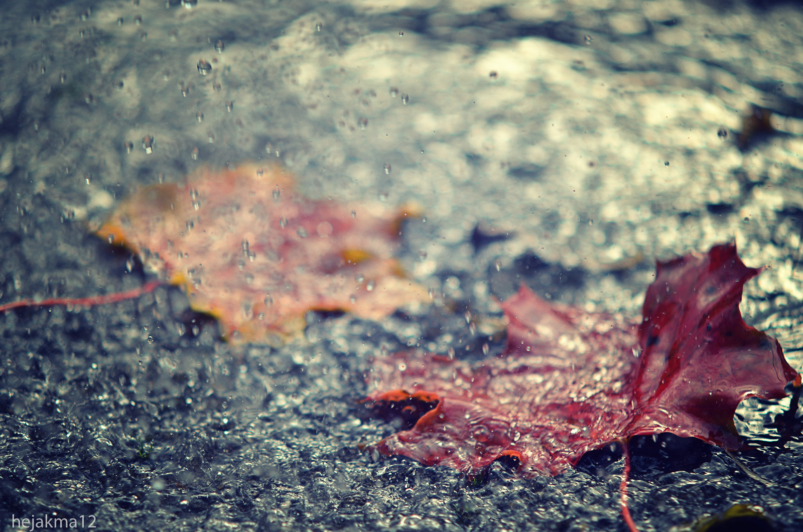 Photograph summer is over by hejakma  . on 500px