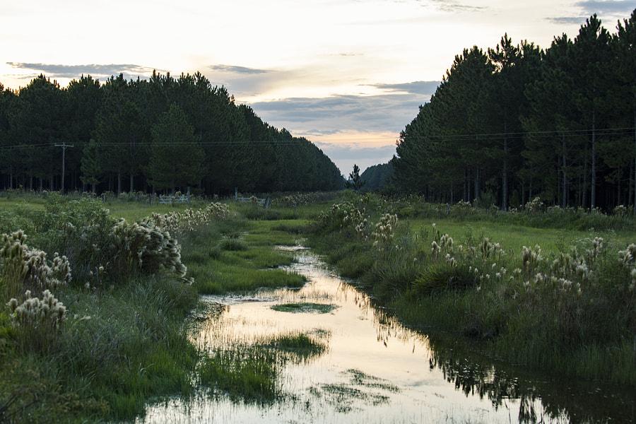 Camino de agua.
