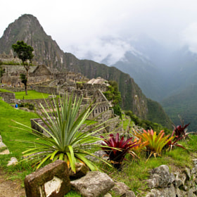 Machu Picchu by Kim Barnes (kimbar)) on 500px.com
