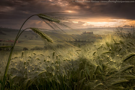 Among the whispers of the Tuscan hills by 500px on 500px