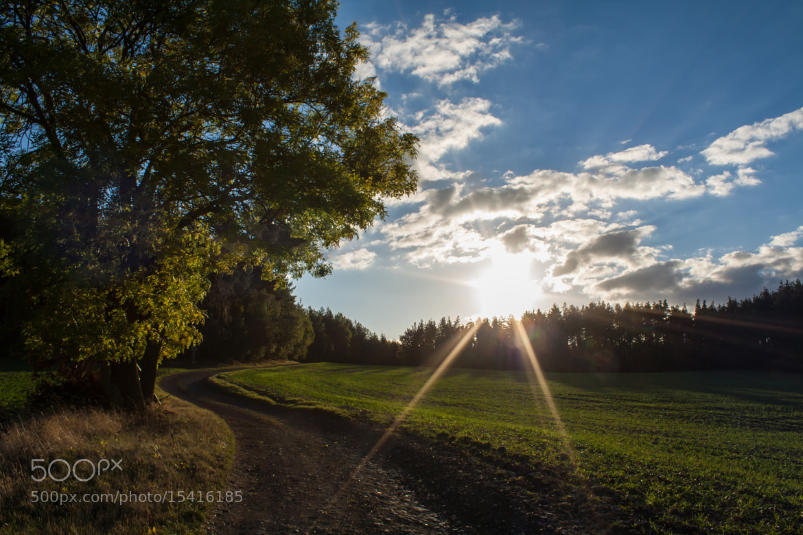 Photograph Autumn Sun  by Max Dietrich on 500px