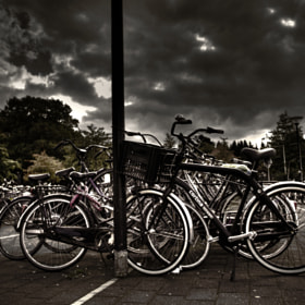 Abandoned bicycles by Myron van Bochove (MyronvanBochove)) on 500px.com
