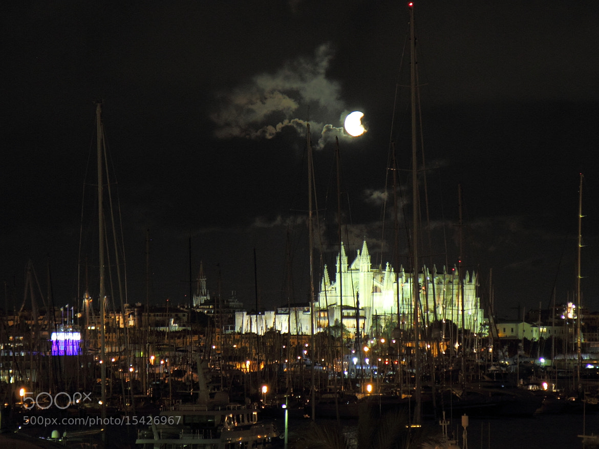 Photograph La Seu by Night by Gheorghe Postelnicu on 500px