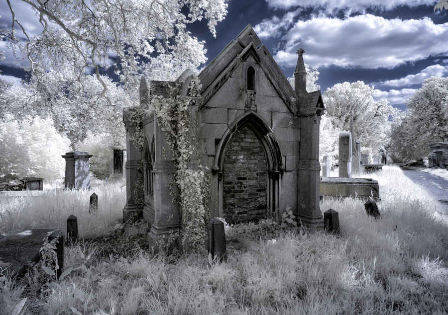 Kensal Green Cemetery in Infrared