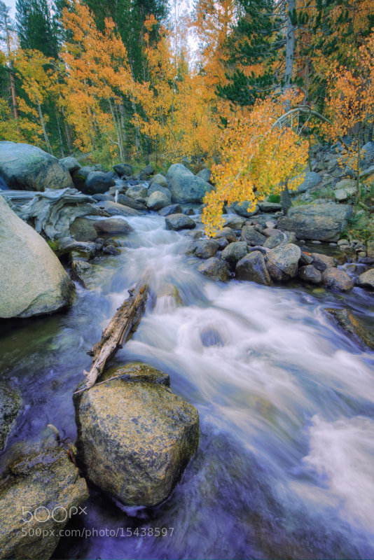 Photograph Bishop Creek, Late September by Vincent James on 500px