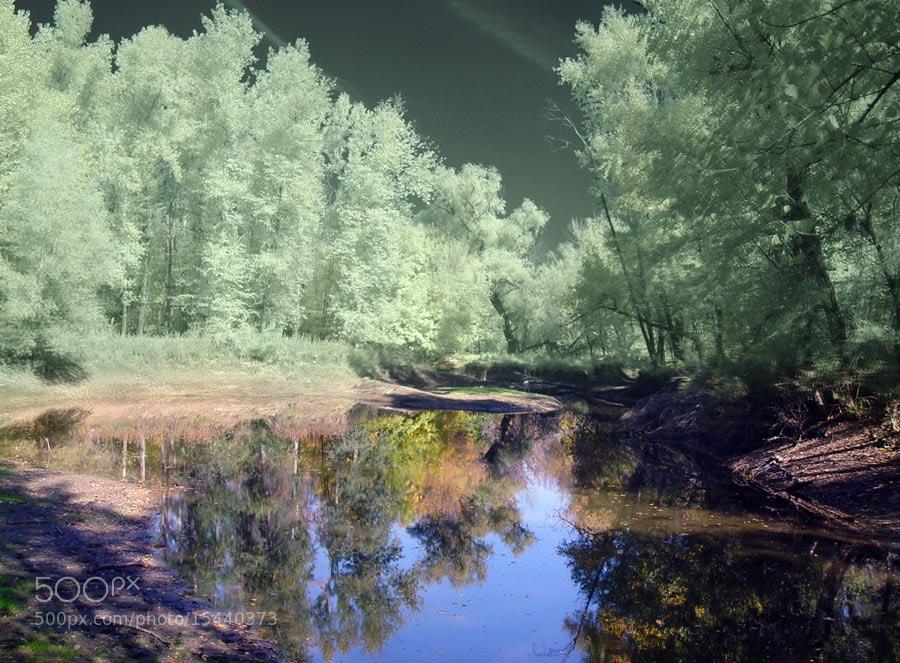 Photograph open you eyes by Alexandre Varyhanov on 500px
