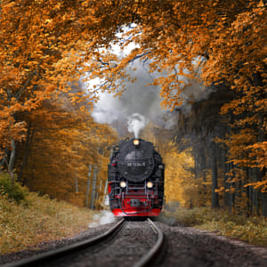 Autumn Journey by 500px on 500px