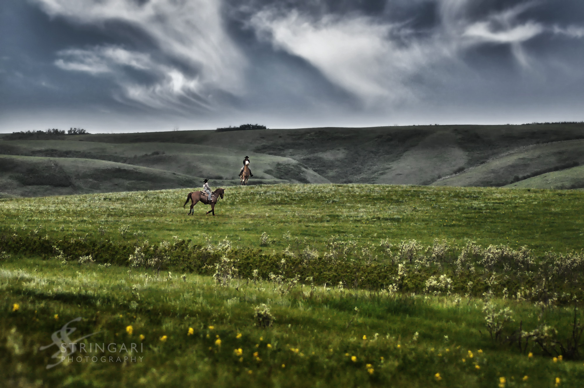 Photograph Riding on the Prairie by Carla Stringari Pudler on 500px