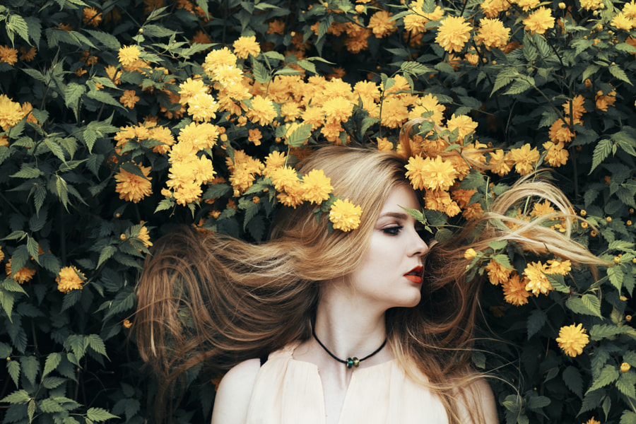 Yellow flowers by Jovana Rikalo on 500px