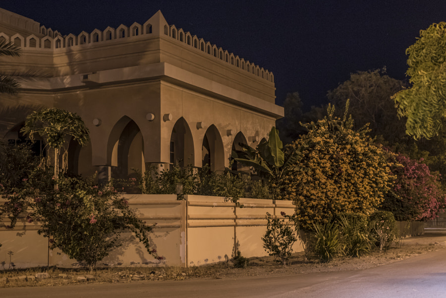 Arab House with Flowers