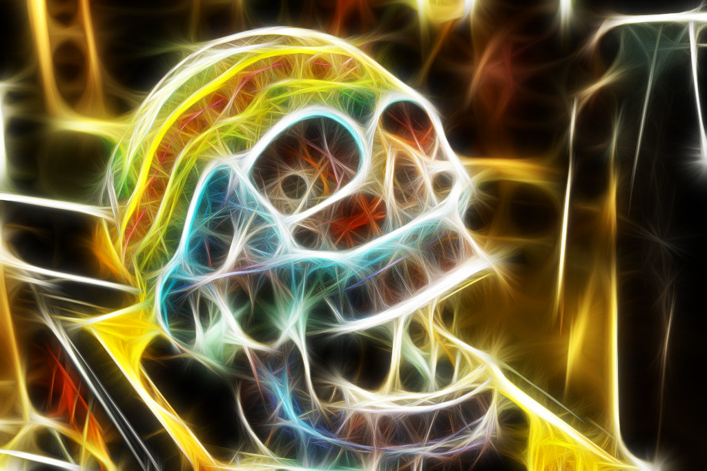 Photograph Fractalius Skull by Gerard Inglés Camats on 500px
