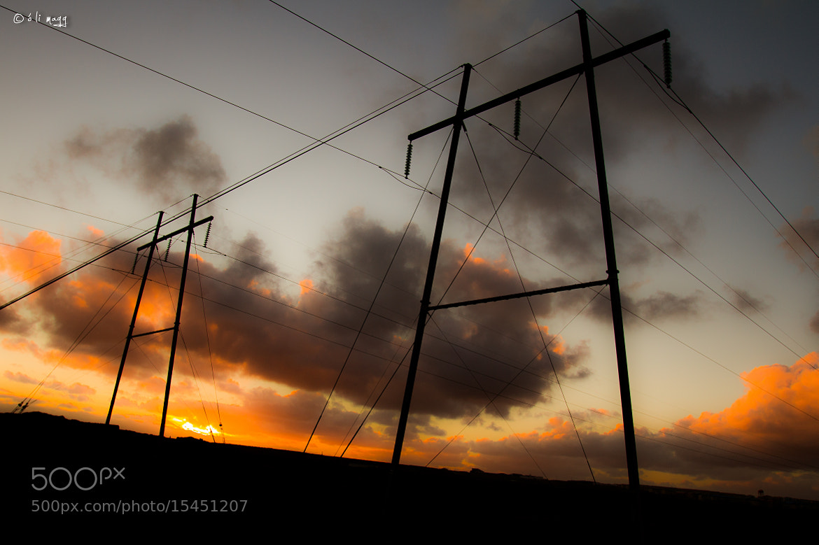 Photograph Electric silluettes by Óli Magg on 500px