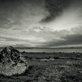 Fallen Stone, 2012