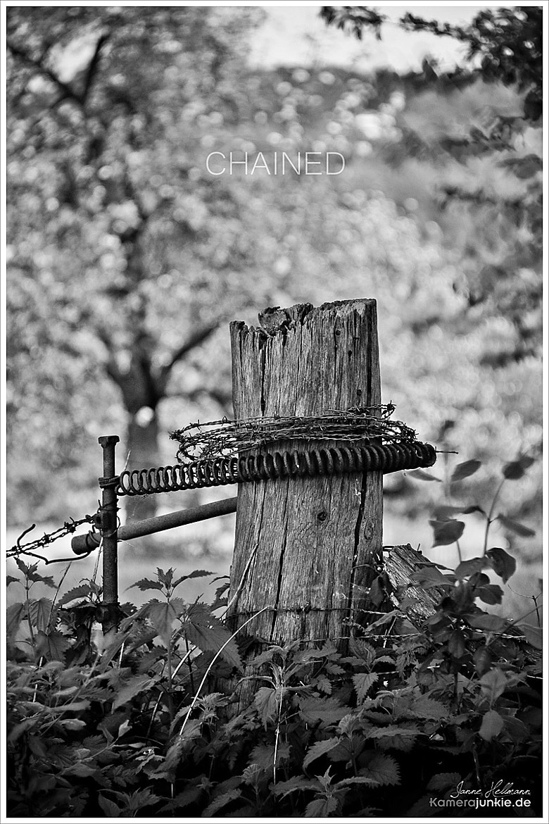 Photograph Chained by Janne Hellmann on 500px