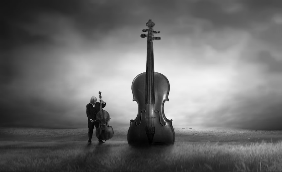 the music of nature by nikos Bantouvakis on 500px.com