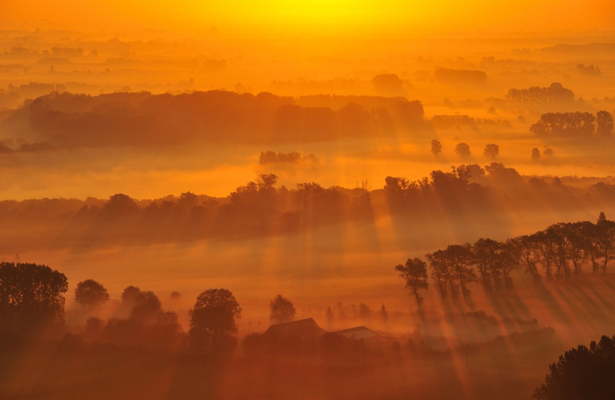 Photograph Golden morning  by Yves Adams on 500px