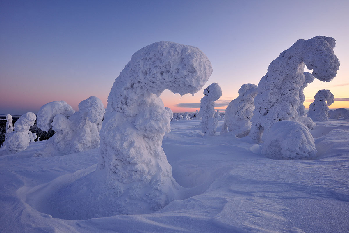 Photograph Frozen trolls by Yves Adams on 500px