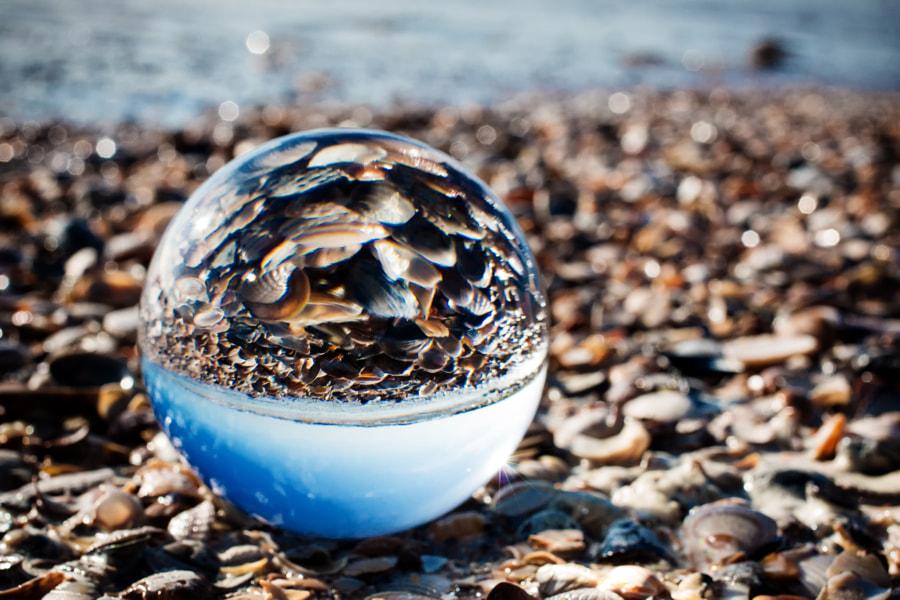 Crystal Ball and Shells on the Beach