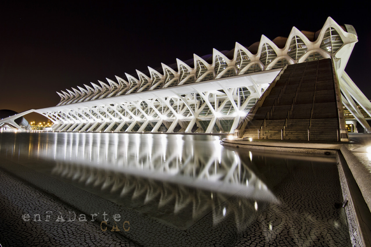 Photograph Spine by Francisco Alcantud on 500px