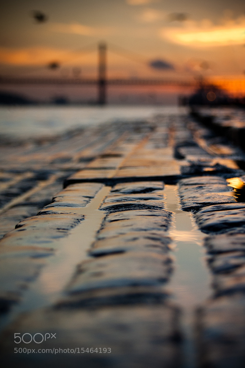 Photograph Along Tejo by Viktor Andermo on 500px