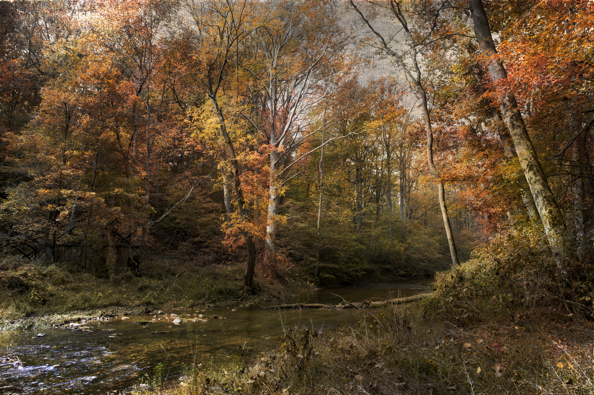 Photograph October Afternoon by John Rivera on 500px