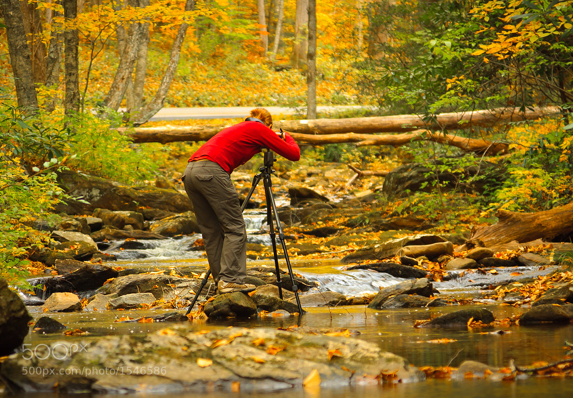 Photograph autumnal photographer by Thomas  McCann on 500px