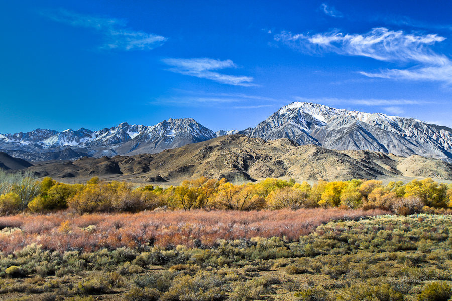 Photograph Hwy 395 -  Inyo National Forest, Eastern Sierra Nevada - CA by Dominique  Palombieri on 500px
