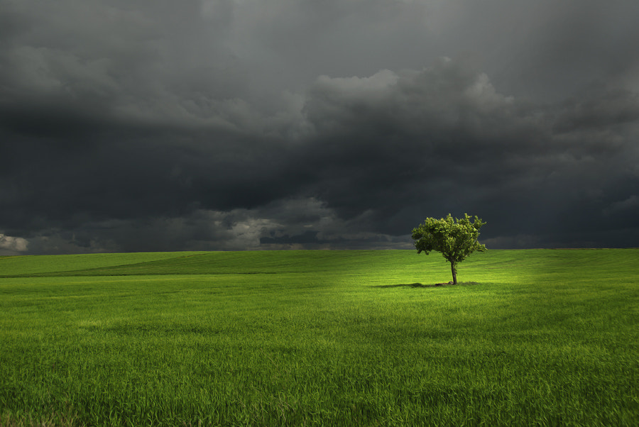 Photograph the storm by Ariasgonzalo . on 500px