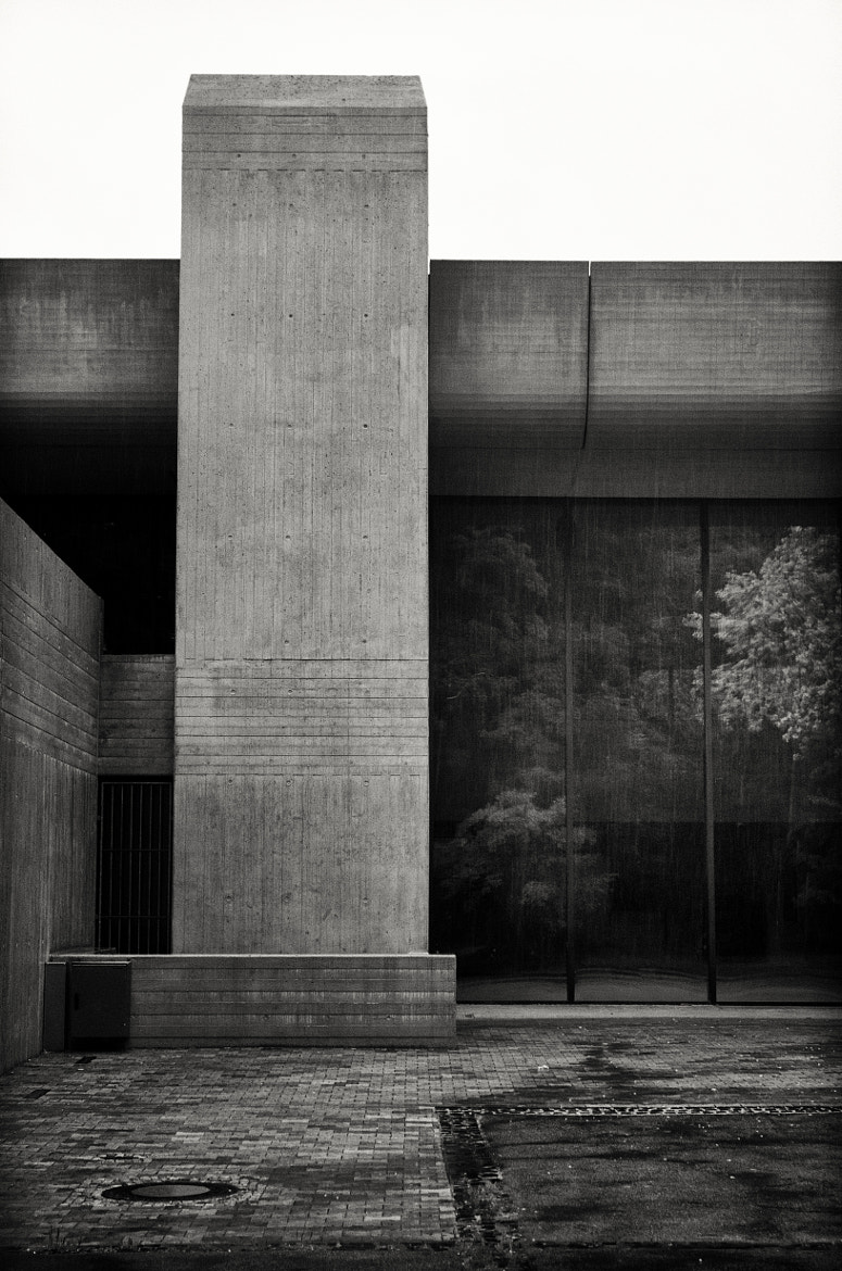 Photograph Concrete Forest by Markus Green on 500px