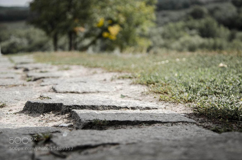 Photograph Untitled by Sergii Samus on 500px