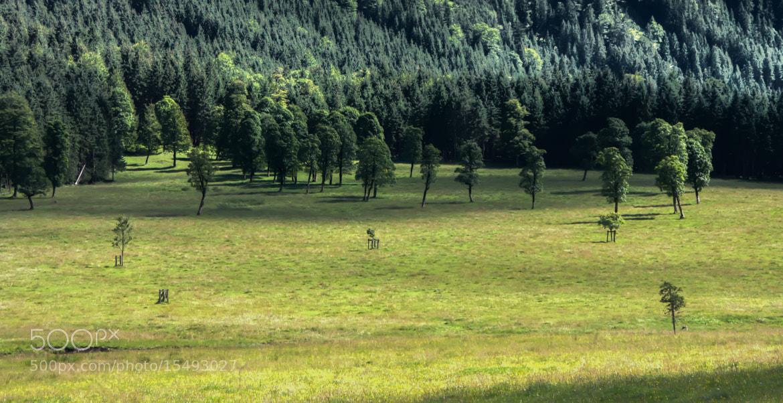 Photograph Landscape by Peter Teufl on 500px