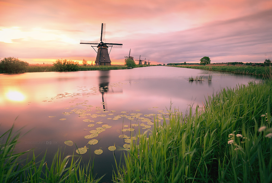 fantastic kinderdijk by Stani Szilagyi on 500px.com