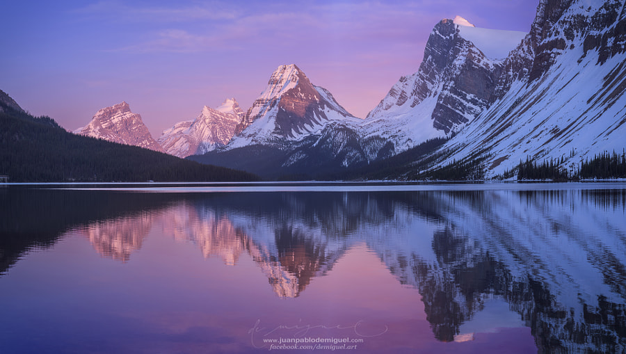 Landscape Fine Art Photography, Bow Lake 2 by nature and landscape photographer Juan Pablo de Miguel