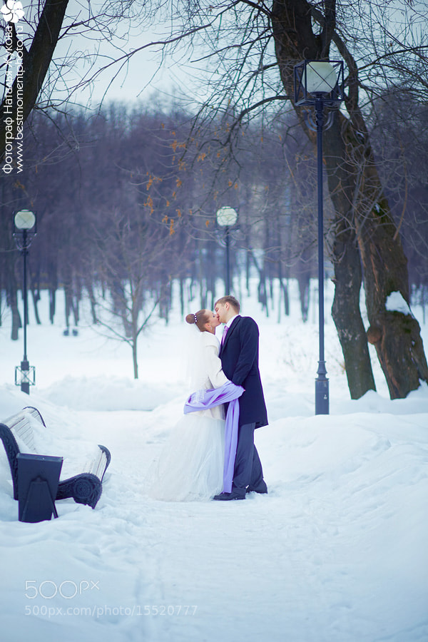 Photograph Winter wedding by Natalya Zhukova on 500px