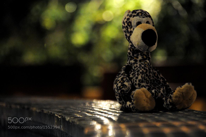 Photograph When i was 3 by Rasul Guliyev on 500px