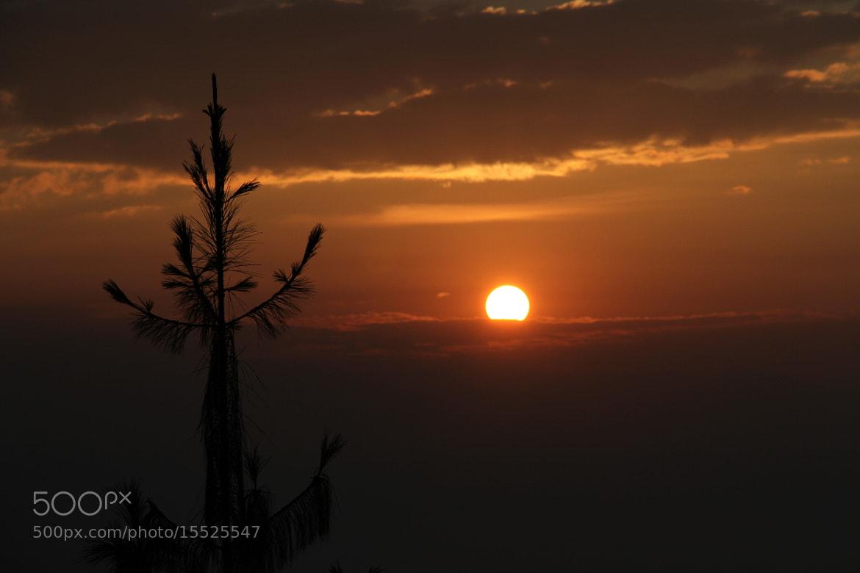 Photograph Rise and Shine by Sudeep Devkota on 500px