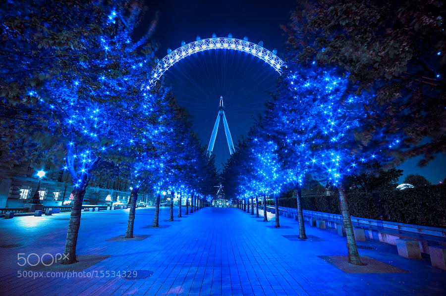 Photograph London Eye at night by Jonatan Martin on 500px