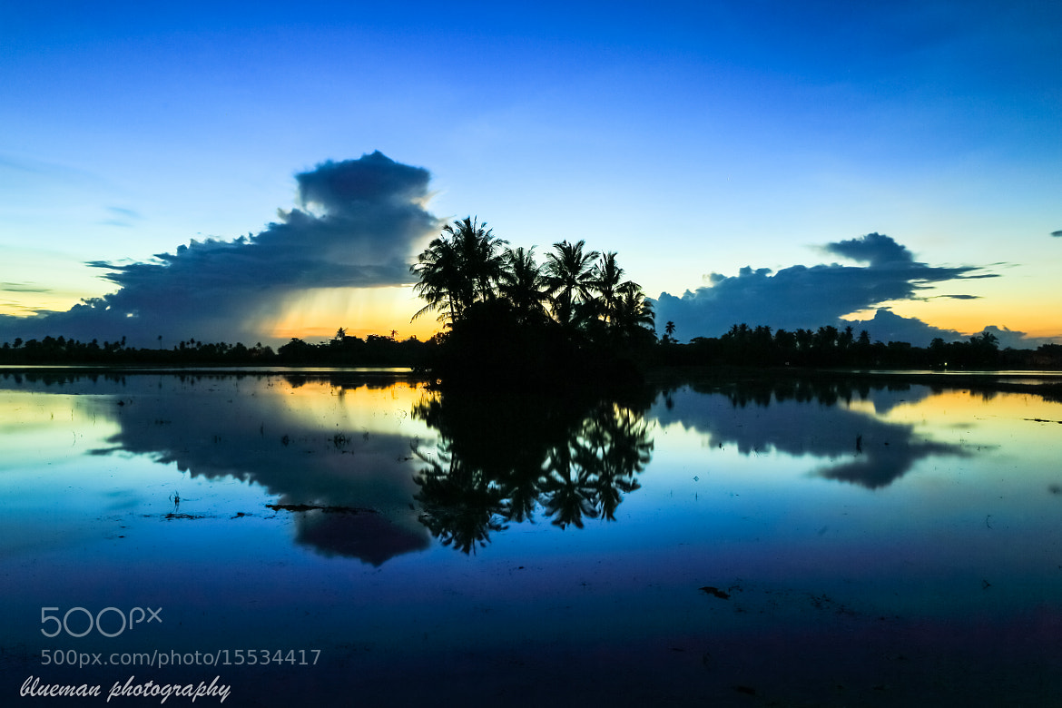 Photograph Coconut Island by Blueman Teh on 500px