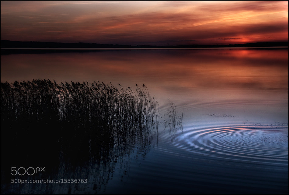 Photograph FUSION by Melanie Brunzel on 500px