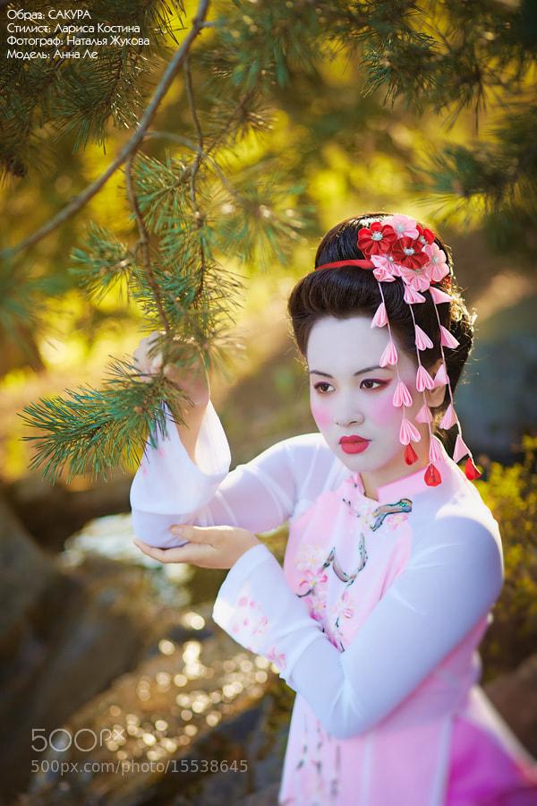 Photograph Oriental cherry by Natalya Zhukova on 500px